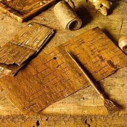 В Великом Новгороде найдены 1000-я и 1001-я по счету берестяные грамоты