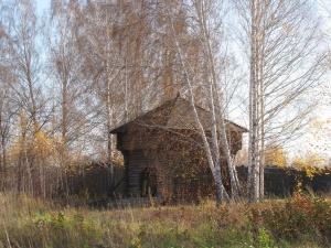 Историко-архитектурный музей под открытым небом в Академгородке: новый взгляд
