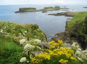 Иеромонах Серафим (Алдеа). Первый православный монастырь на кельтских островах, первый за тысячу лет